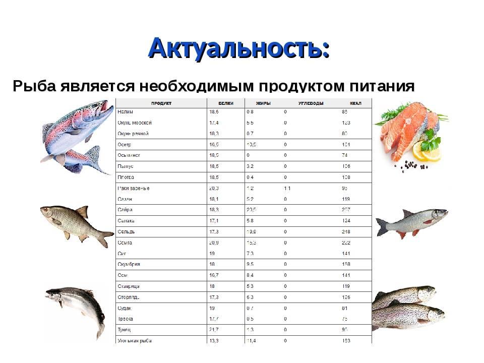 Как приготовить морского окуня: в духовке в фольге, в рукаве, в мультиварке, в микроволновке, на пару, гриле, сковороде — самые лучшие рецепты с пошаговой инструкцией