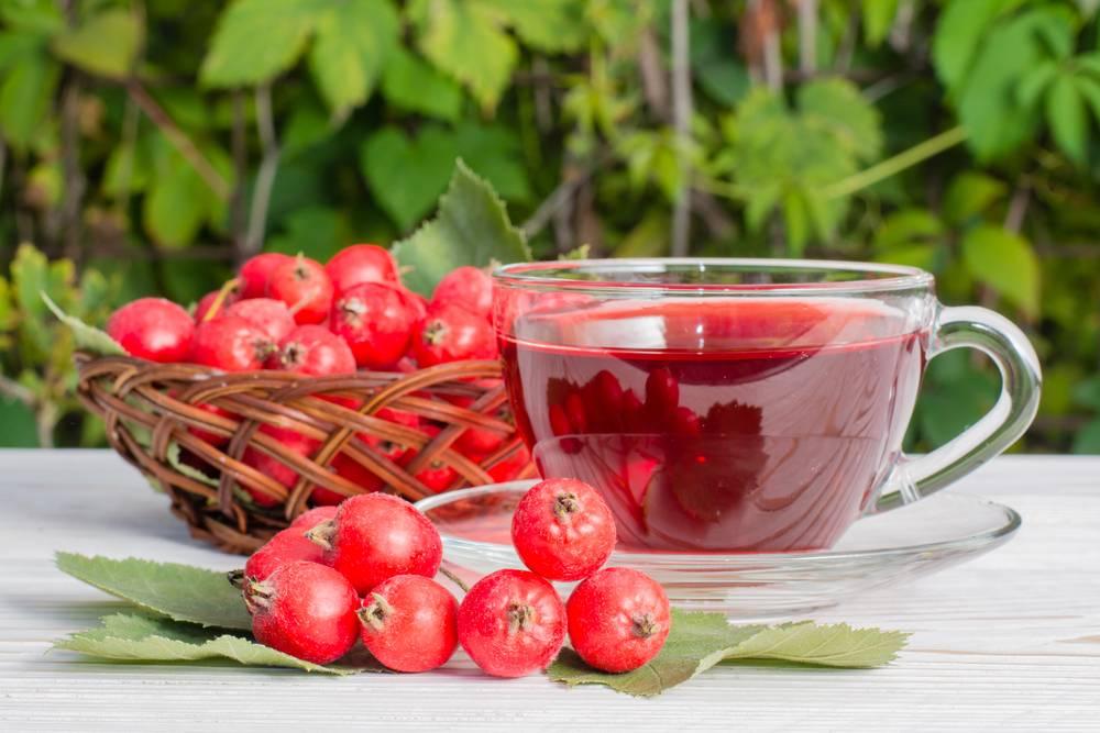 Витаминные, вкусные и полезные напитки из шиповника при беременности