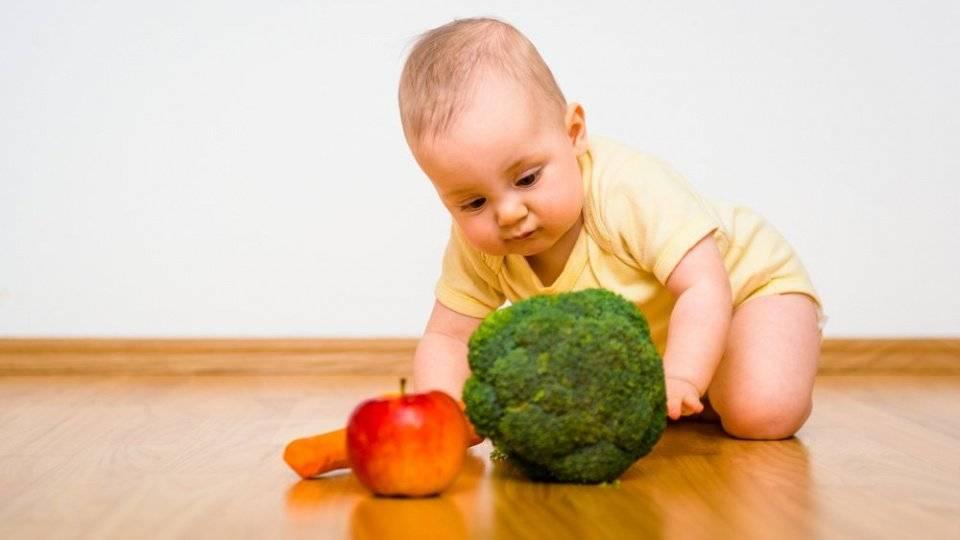 Ребенок не ест овощи: как приучить или заставить есть овощи, если он не хочет их есть в 2 года? мнение комаровского