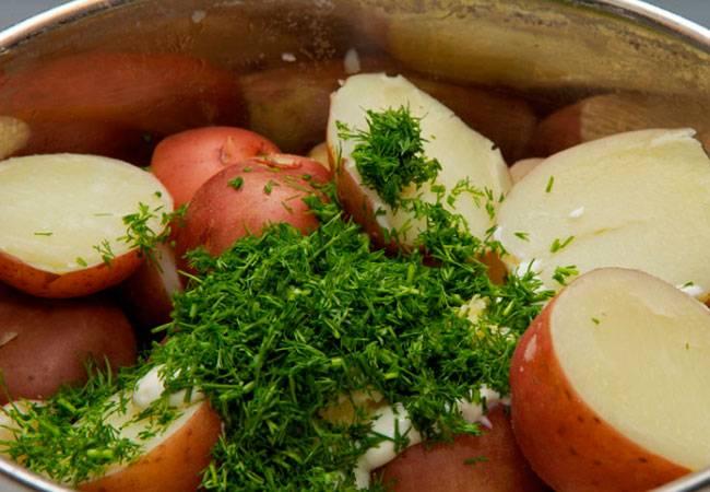 Тушеная картошка при грудном вскармливании - мамины новости