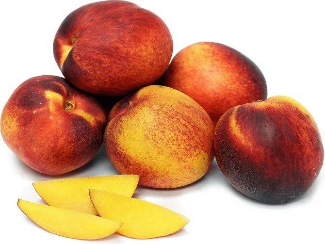 Персики при грудном вскармливании – можно есть или нет? — дачники лайф