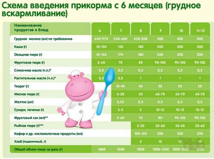Как меняется стул грудничка при введении прикорма: особенности и коррекция запора у ребенка