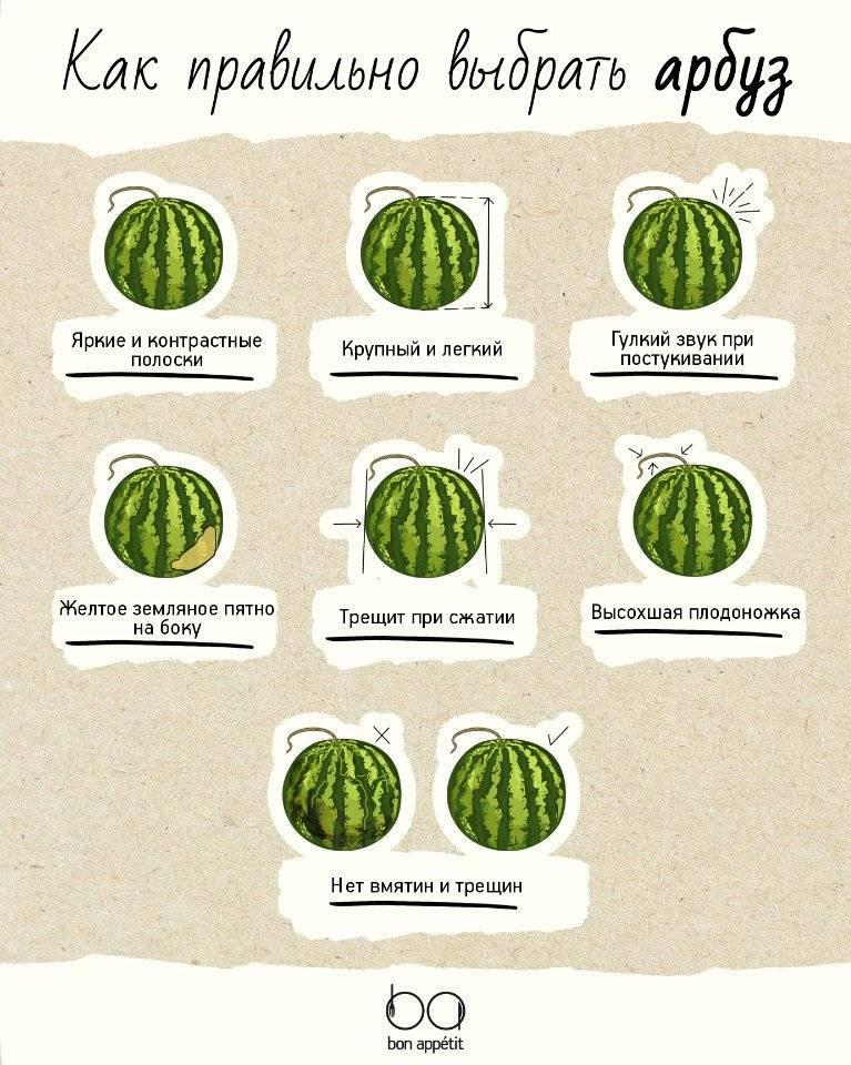 Как правильно выбрать арбуз вкусный и спелый, правила выбора