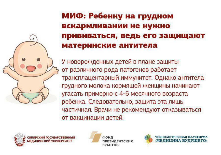Можно ли хрен при беременности и грудном вскармливании