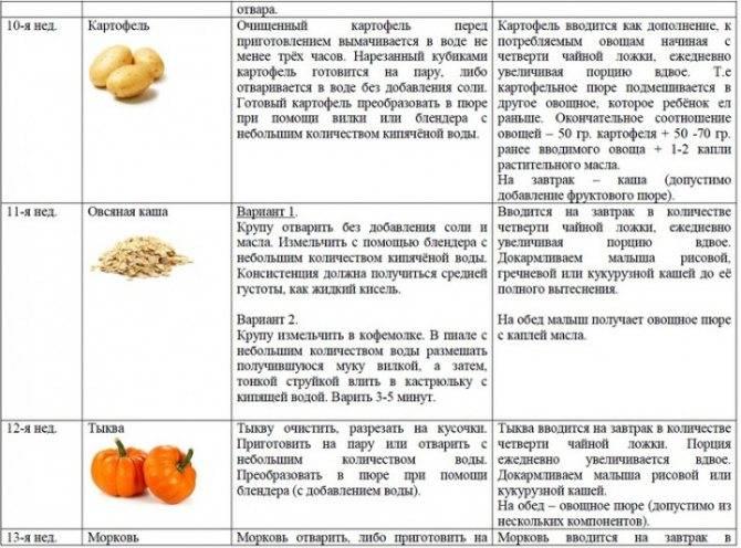 Цукини (36 фото): что это такое, как выглядит и чем отличается от кабачка, калорийность и выращивание