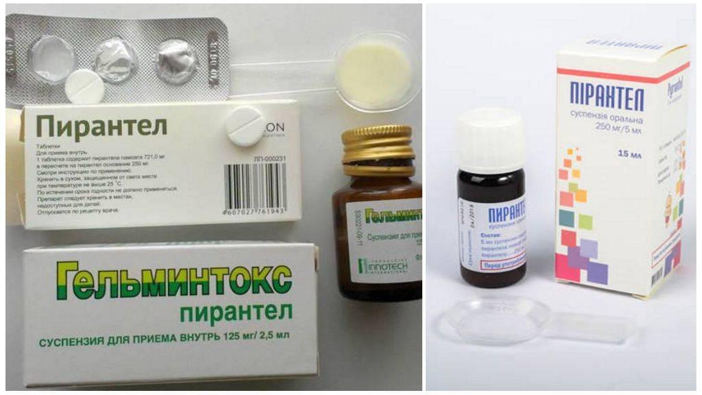 Пирантел при лактации: особенности лечения глистов