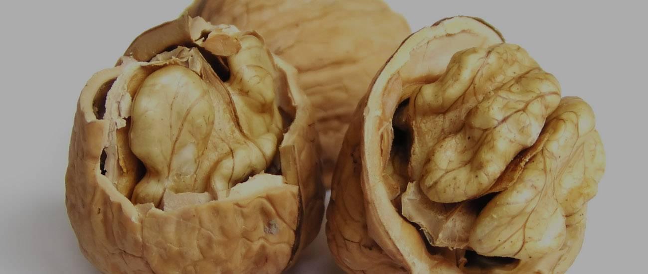 Можно ли кормящей маме грецкие орехи