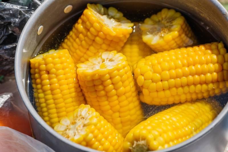 Можно ли кормящей маме вареную и консервированную кукурузу: введение продукта при грудном вскармливании