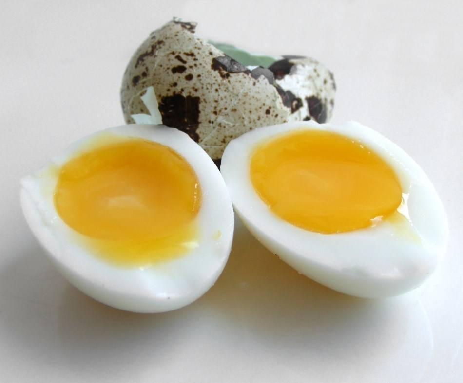 Яйца в рационе кормящей мамы