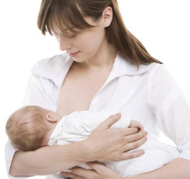 Примула вечерняя для женщин: польза и особенности применения