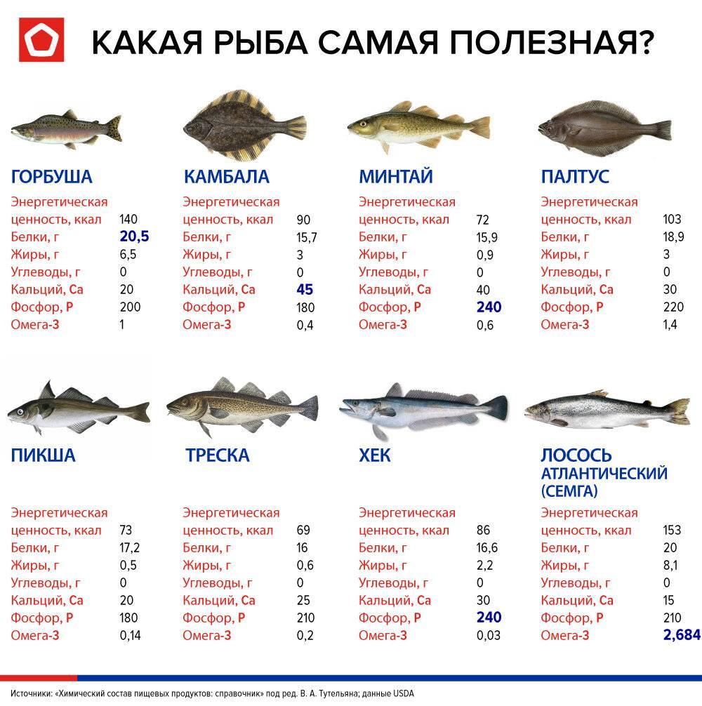 Когда вводить рыбу в рацион питания ребенка?