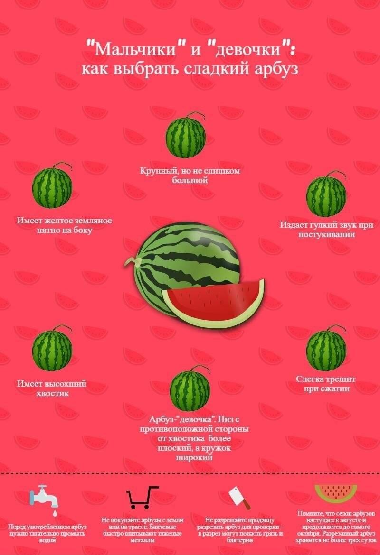 Как правильно выбрать сладкий арбуз — проверенные методы.