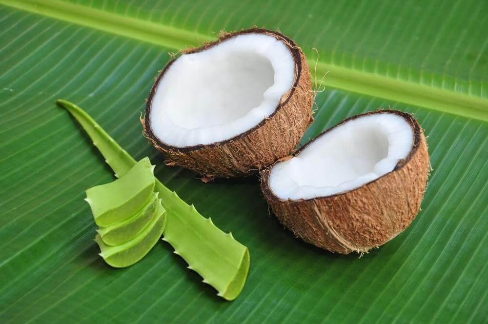 Кокос: свойства и польза для организма   food and health