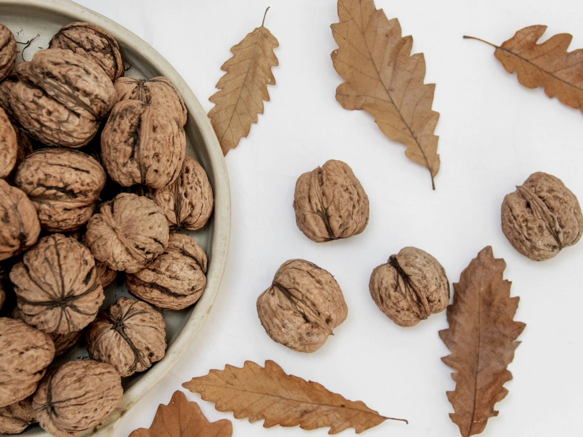 Грецкие орехи для повышения лактации: миф или правда?