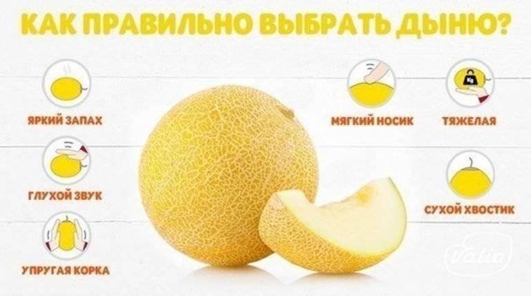 Можно ли бананы при грудном вскармливании новорожденного, когда и в каком количестве