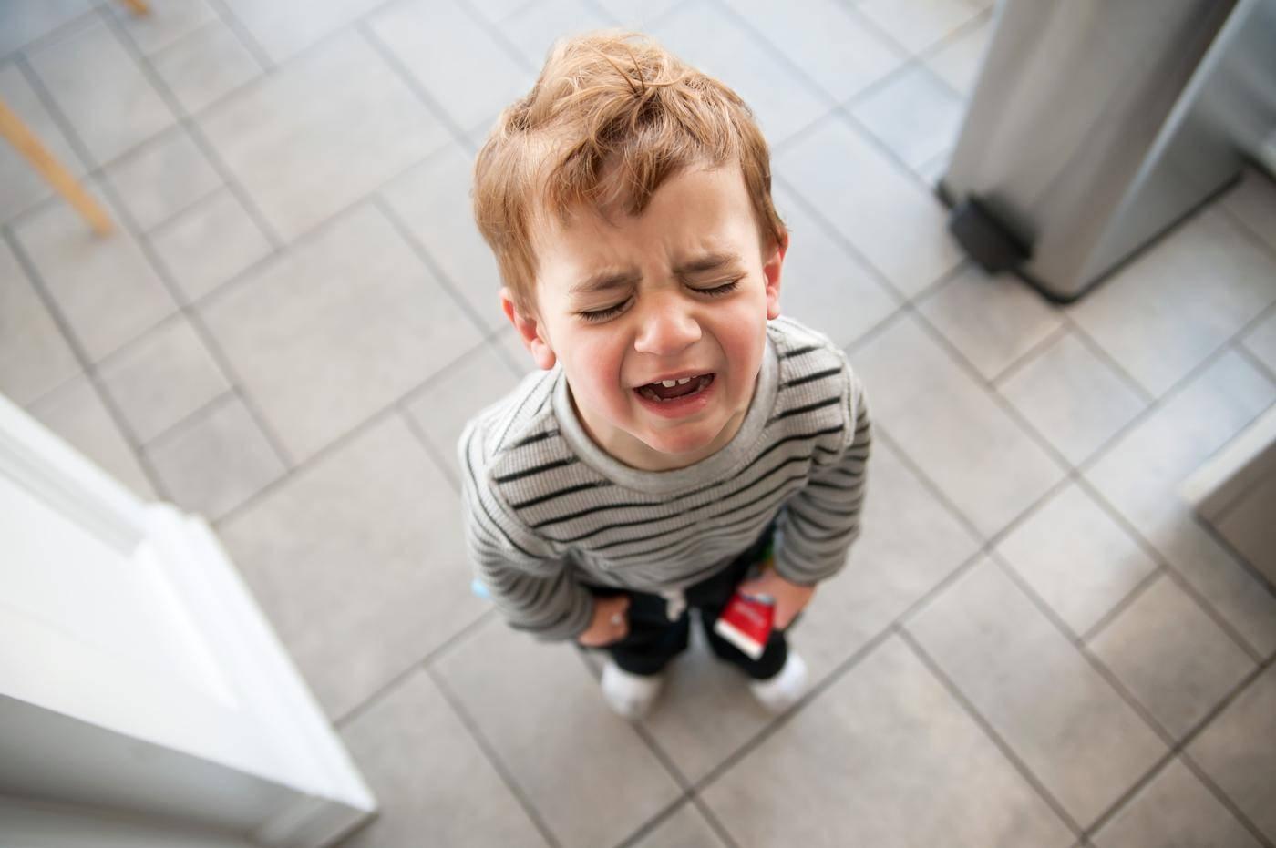 Ломать - не строить? психология и воспитание от 1 до 3 лет