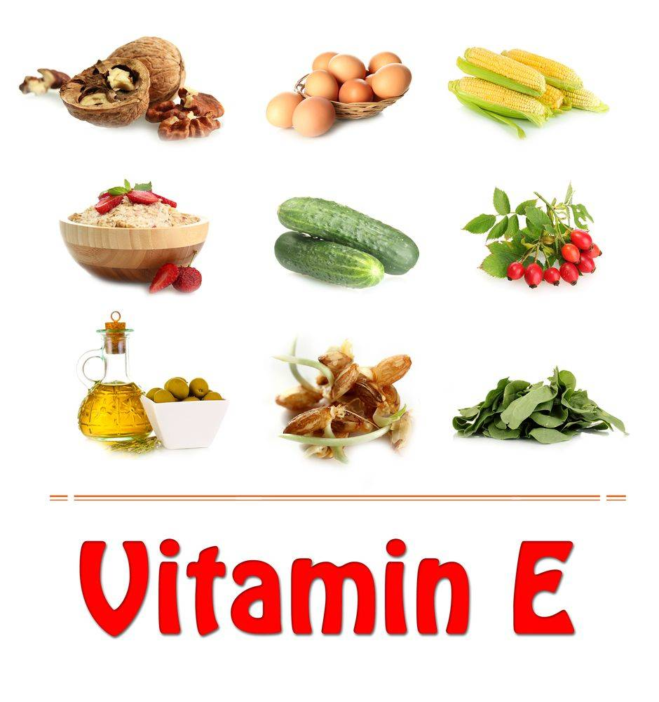 В каких продуктах содержится витамин e: таблица (список)