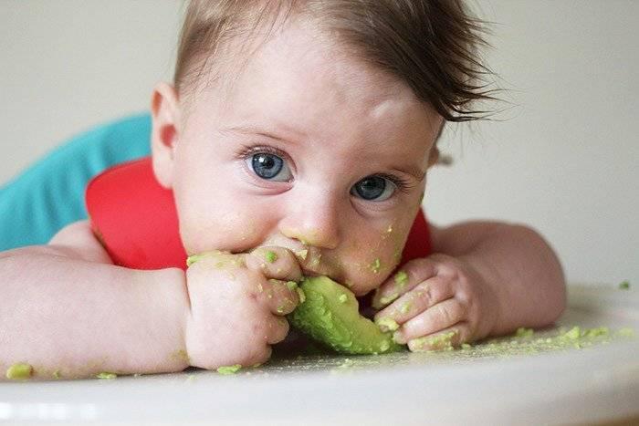 Знакомство с авокадо для детей: когда, почему и как