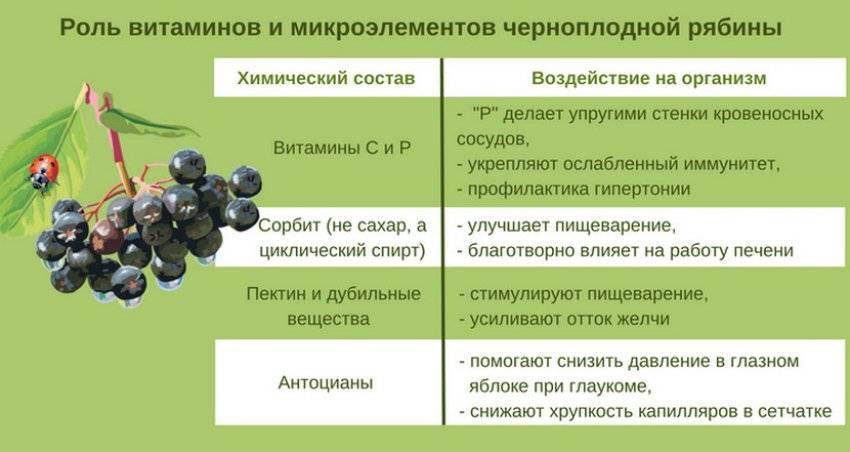 Функции и гормоны щитовидной железы, заболевания щитовидки: симптомы гипотиреоза и гипертиреоза