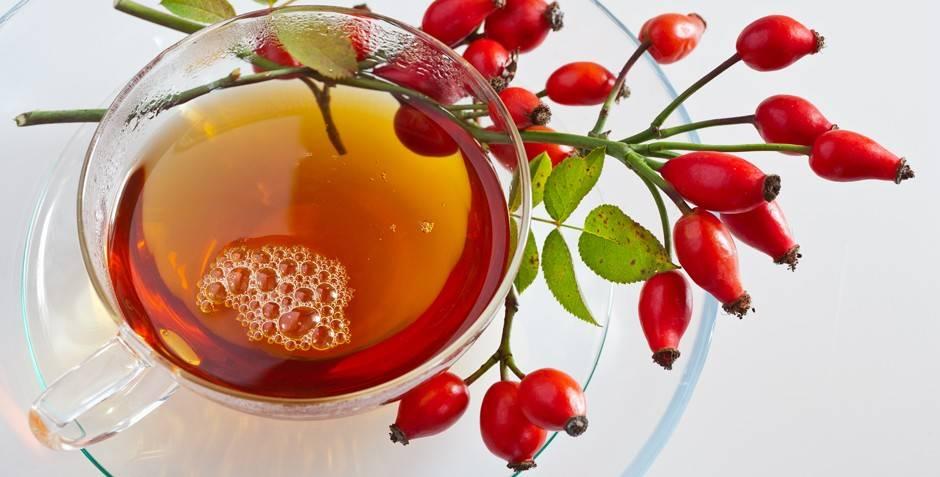Как правильно заваривать шиповник и пить (чтобы сохранить витамины)
