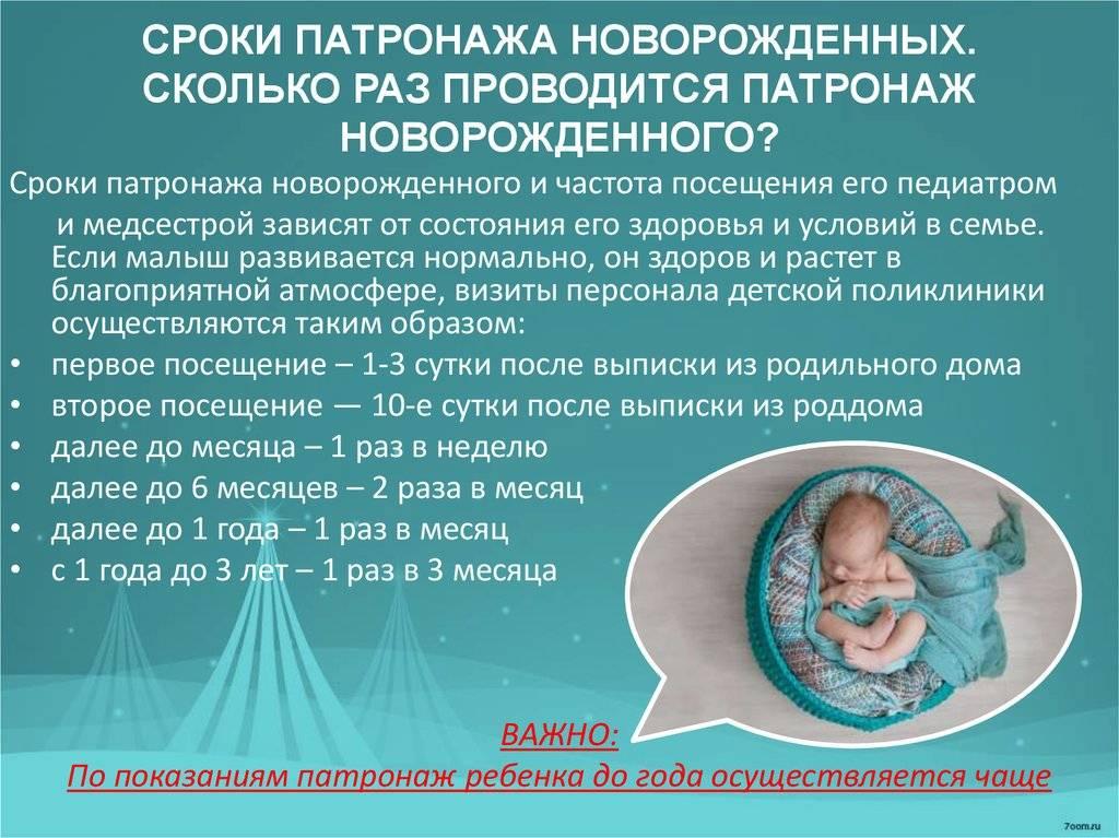 Сколько раз должен приходить педиатр к новорожденному