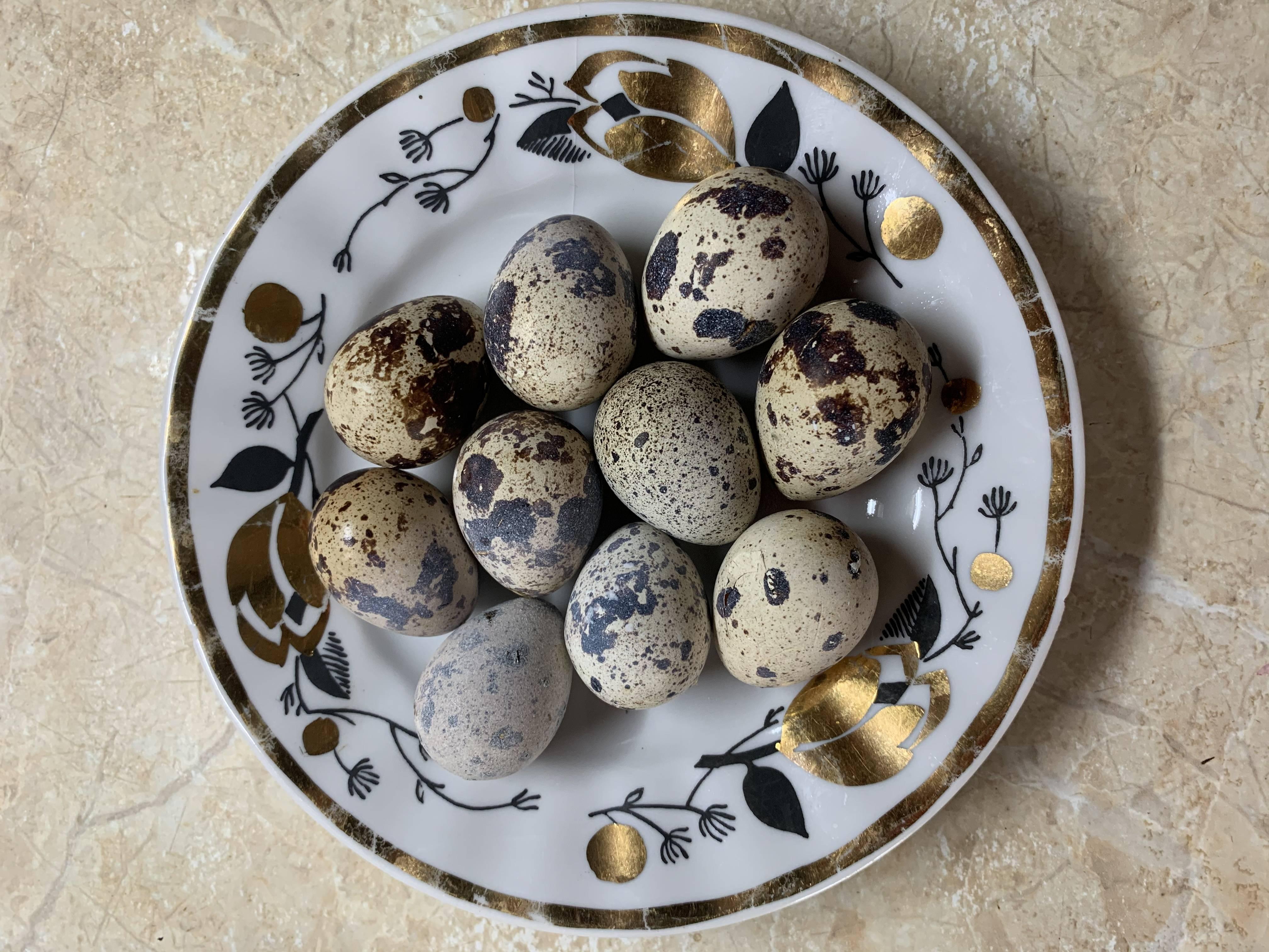Перепелиные яйца при грудном вскармливании: можно ли их кушать маме при гв, с какого возраста дают ребенку, а также вред и польза продукта