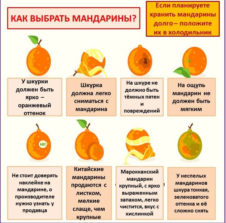 С какого возраста можно давать ребенку мандарин: ответ специалиста, комаровский