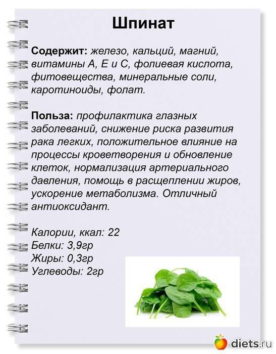 Шпинат для кормящей мамы: полезные свойства и рецепты