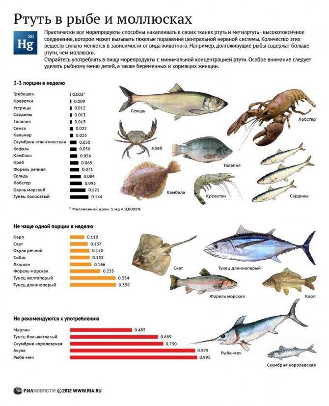 Аллергия на рыбу : причины, симптомы, диагностика, лечение   компетентно о здоровье на ilive