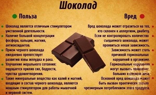 Шоколад при грудном вскармливании (гв): какой можно есть молодым мамам, а какие нельзя и почему