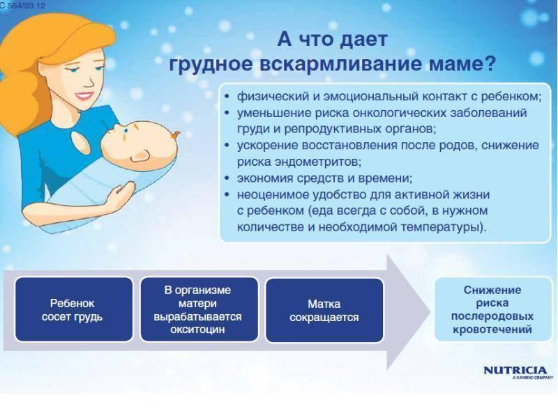 Сметана при грудном вскармливании: польза и вред, влияние на организм матери и желудок младенца