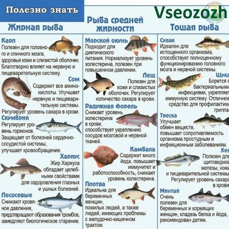 Жареный морской окунь на сковороде: 9 сочных вариантов