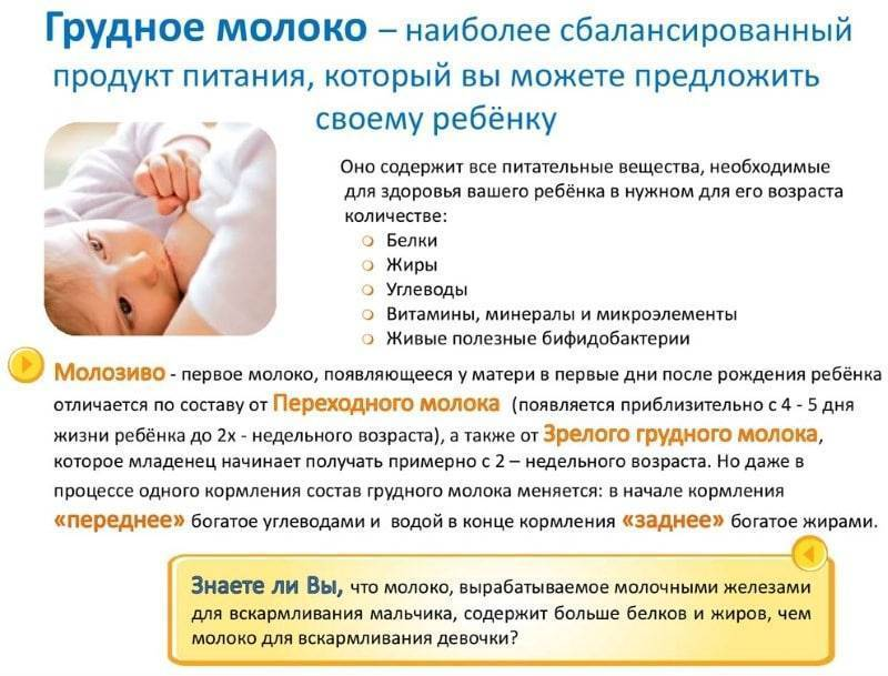 Продукты, которые необходимо употреблять кормящей матери, чтобы повышать лактации грудного молока