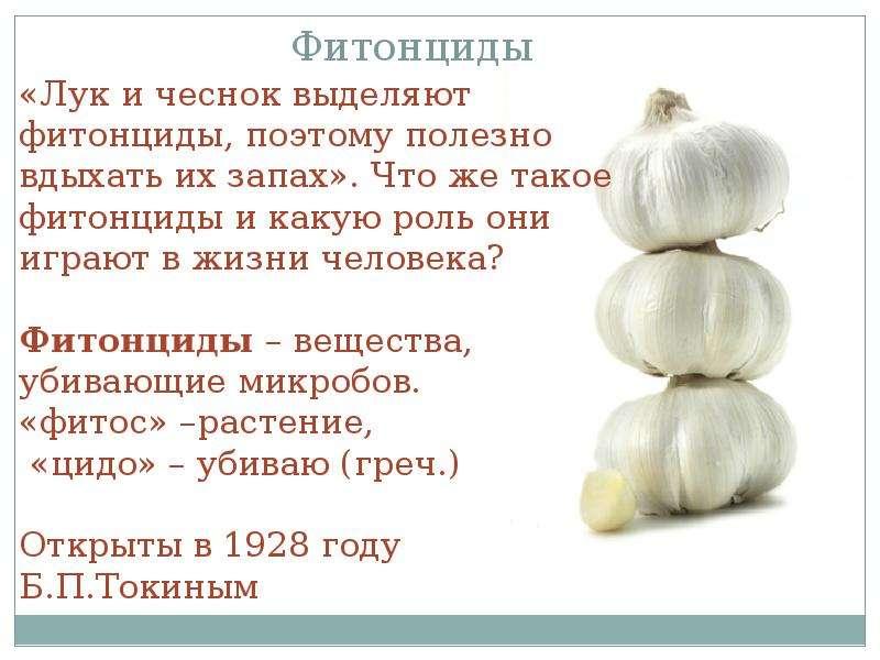 Лук и диабет - владмедицина.ру