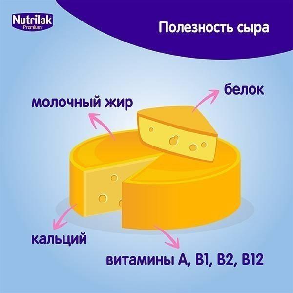 С какого возраста можно давать сыр ребенку: с какого возраста можно давать, когда и со скольки месяцев давать