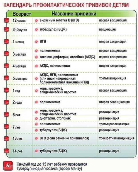 Календарь прививок детям до 1 года: таблица и график вакцинации новорожденных