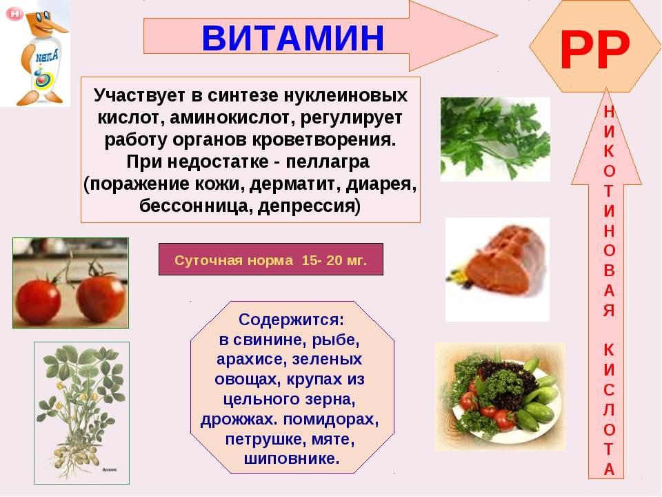 В каких продуктах содержится много витамина с [список] :: здоровье :: рбк стиль
