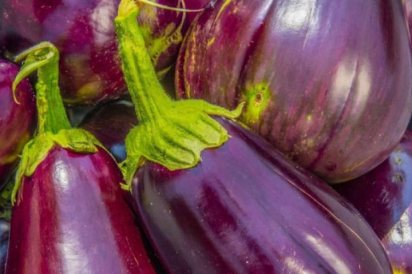 5 потрясающих летних блюд из баклажана