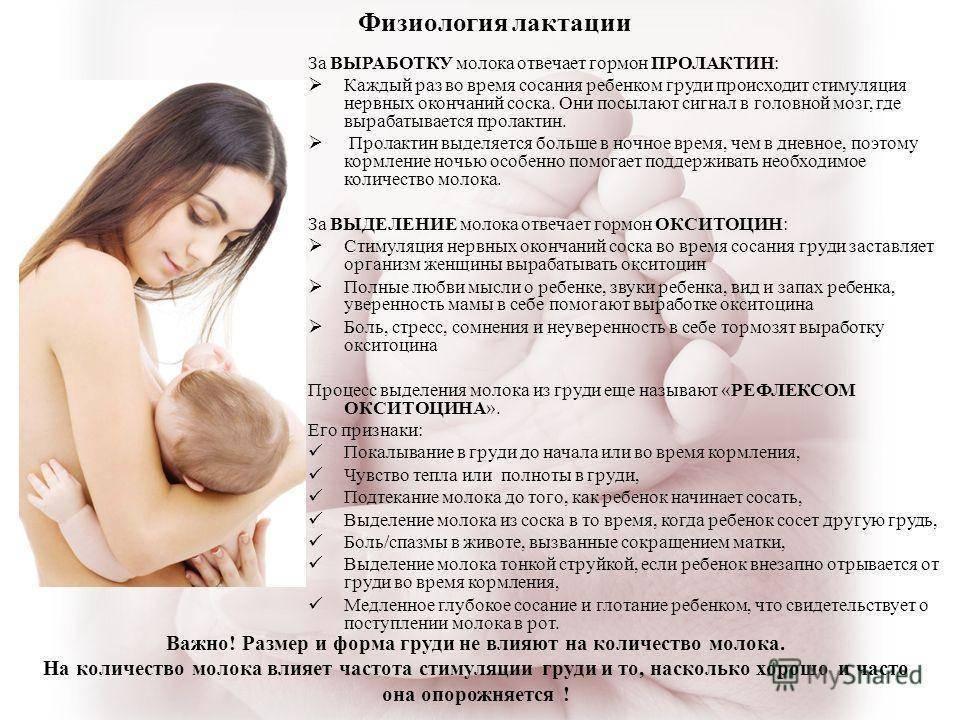 Месячные после родов ‒ когда начинаются?