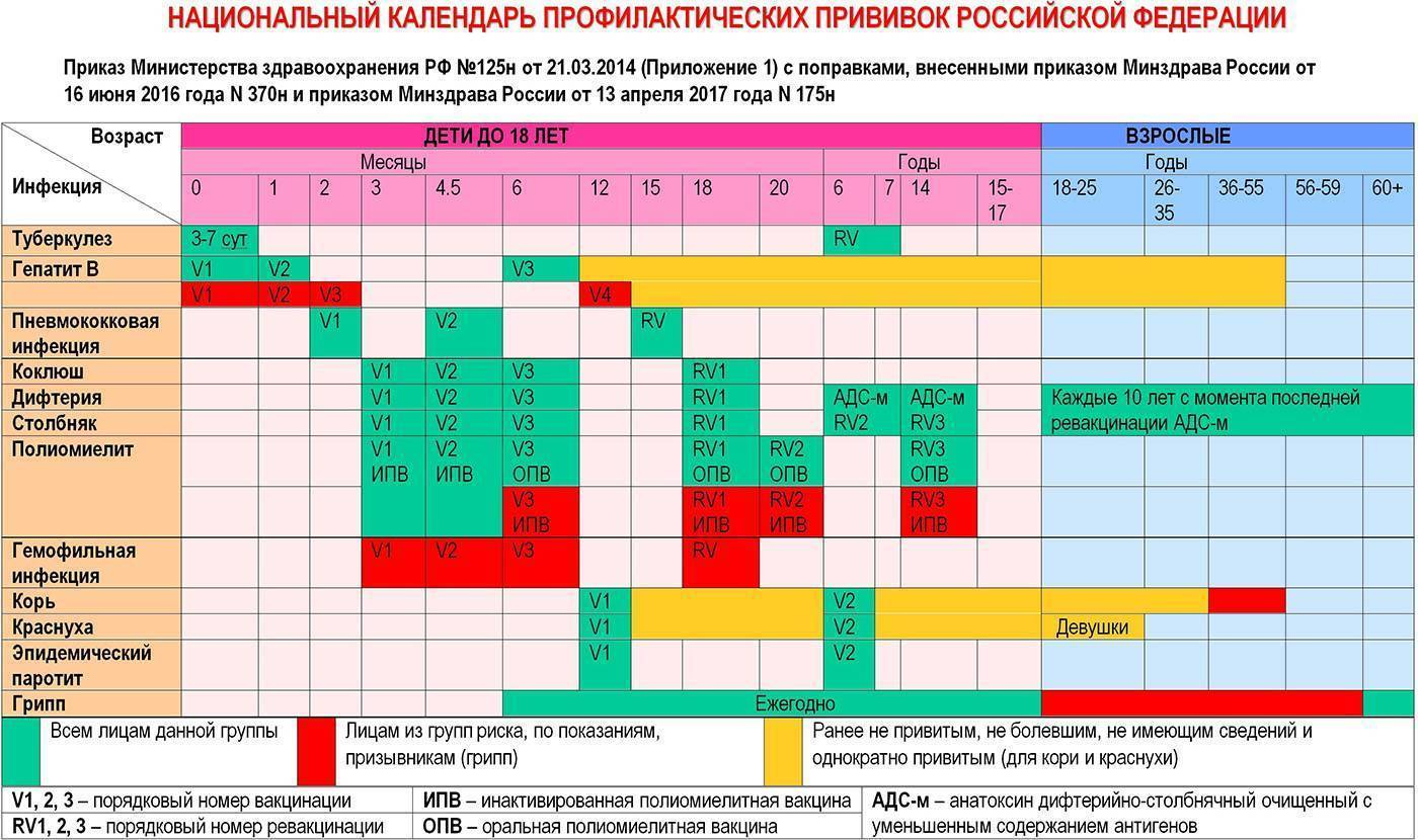 Календарь прививок для детей: график вакцинации