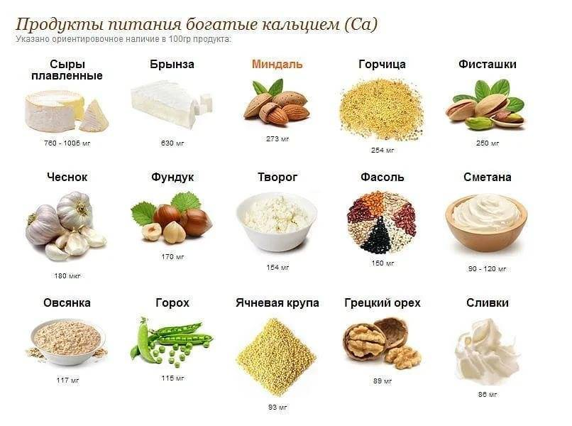 Продукты, богатые кальцием (таблица)