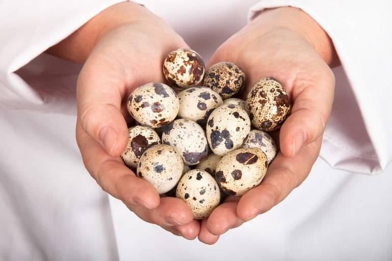 Яйца при грудном вскармливании: можно ли куриные, перепелиные, вареные