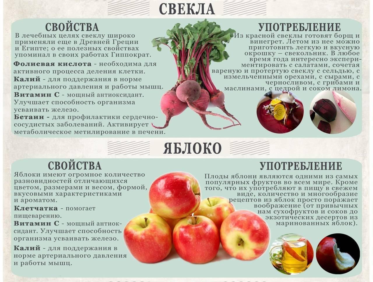 Свекла - уникальный целебный корнеплод | компетентно о здоровье на ilive
