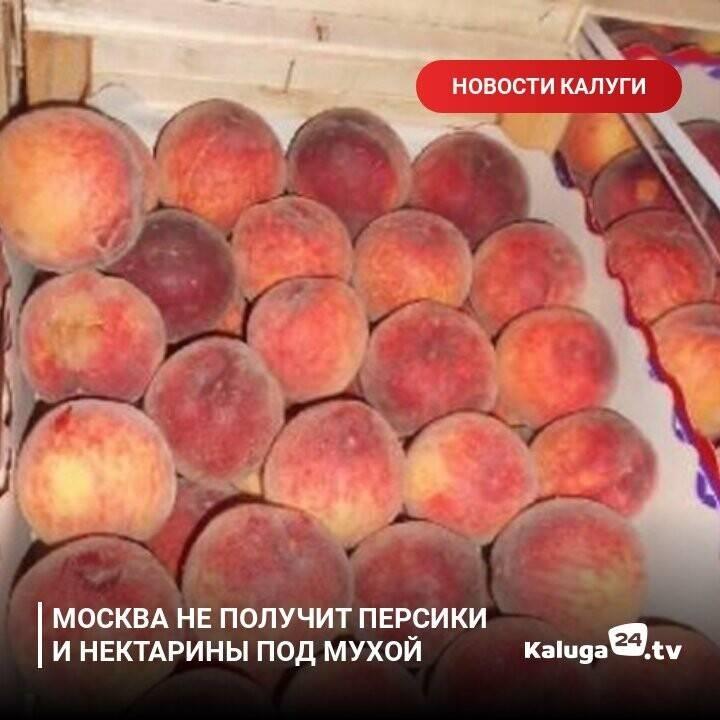 Можно ли персики при грудном вскармливании: польза и вред