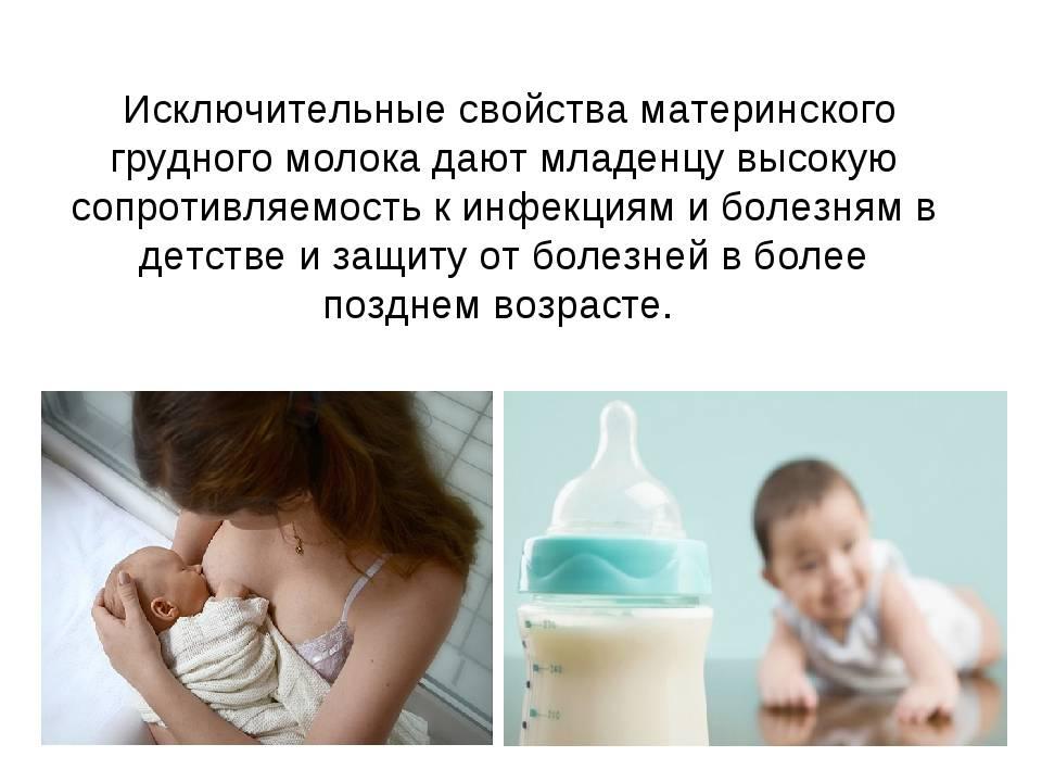 Можно ли пить молоко при грудном кормлении