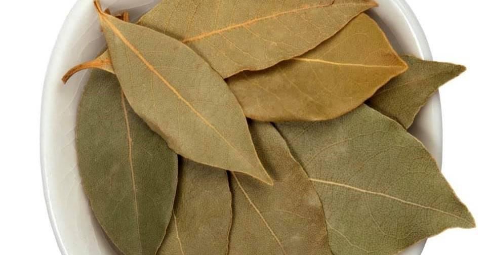 Лавровый лист при гв