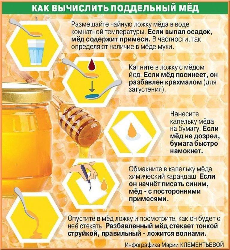 Когда можно давать мед грудничку